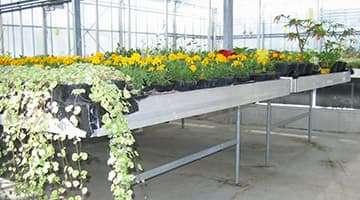 mesa de cultivo fijo para invernadero profesional